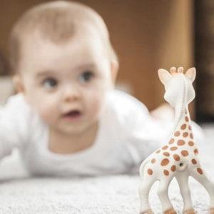 【再入荷】ソフィーと育つ♪赤ちゃんのファーストトイ人気No.1 キリンのソフィー