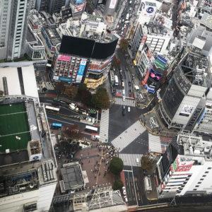都心を一望できる!渋谷スクランブルスクエアの展望台「SHIBUYA SKY」へ行ってきました♡