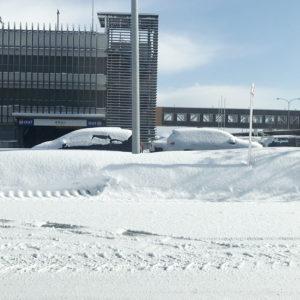 雪の国、青森へ